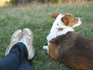 Snickers and me -- in our favorite mode, watching the world go by ...